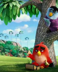 angry-birds-il-film-20