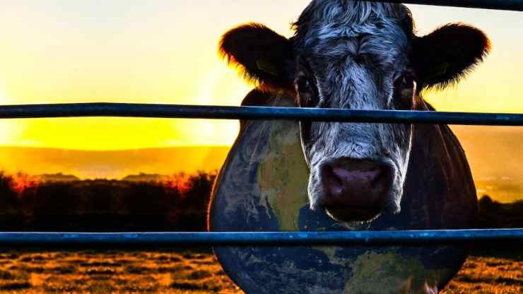 Cowspiracy (Netflix)